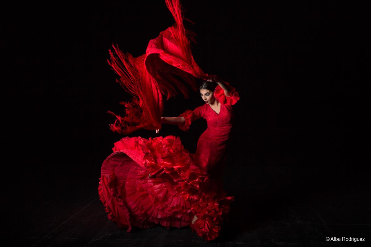 Information about flamenco: a selection of sites